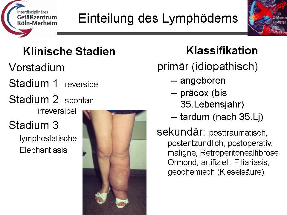 Old Fashioned Ergotherapie Lymphödem Zertifizierung Collection ...